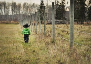 Jax fence